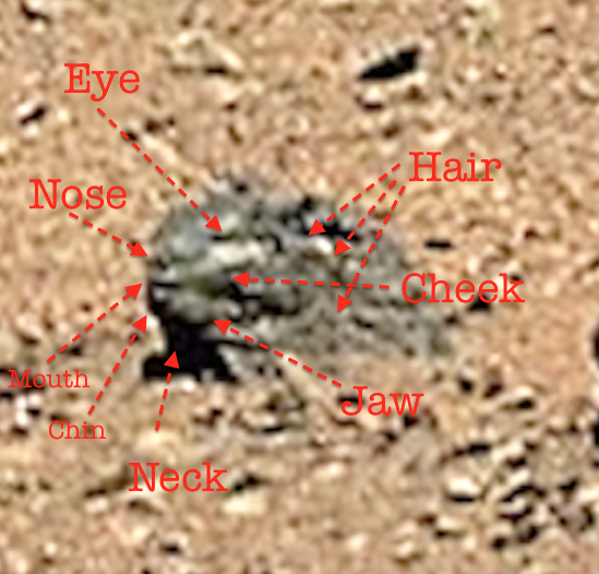 UFO SIGHTINGS DAILY: Mars Face Discovered In NASA Photos ...