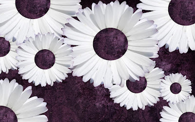 Purple Daisy Tumblr Backgrounds (3).jpg