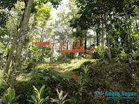 Eco Edu Tourism Forest Sentul Bogor