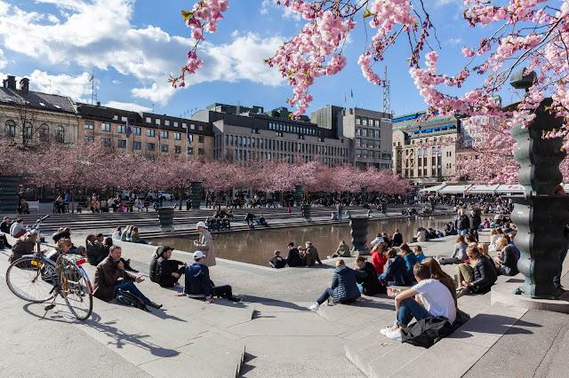 Tại Stockholm, Kungsträdgården (Vườn Hoàng đế) nổi tiếng với vị trí trung tâm đắc địa cùng nhiều quán cà phê lý tưởng để ngồi nhâm nhi thư giãn. Khi mùa Xuân đến, 63 cây anh đào của công viên sẽ làm cho không gian trở nên đẹp hơn bao giờ hết.