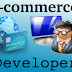 E-Commerce Developer - Leading Ahead The Web World