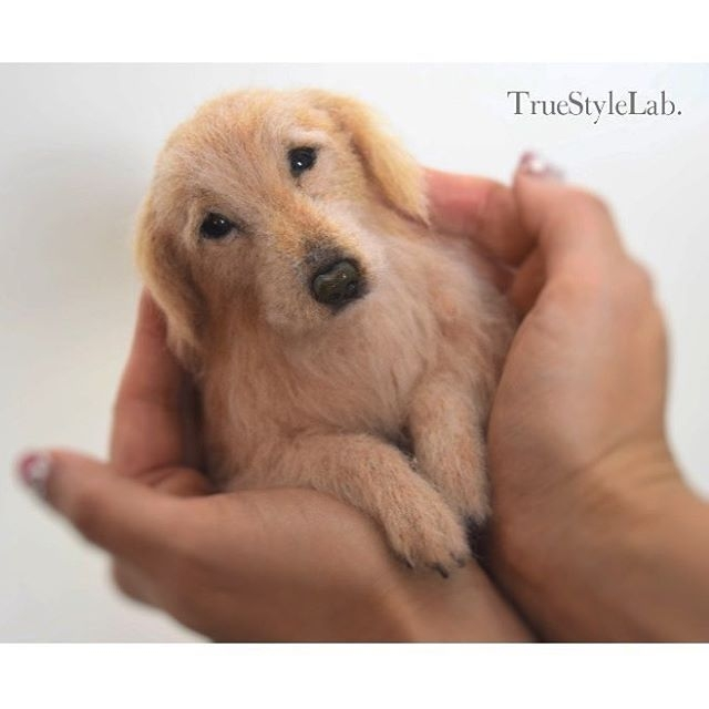 11-Golden-Retriever-Dogs-Terumi-Ohta-Giving-Life-to-Woollen-Animal-Sculptures-www-designstack-co