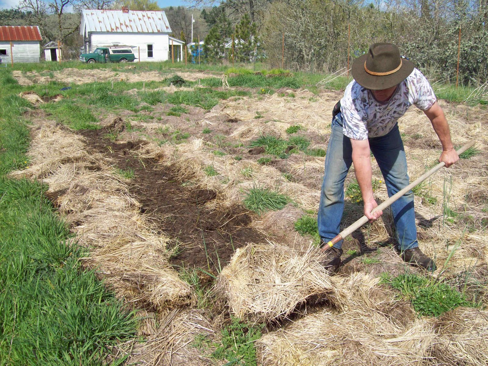 deep mulch gardening, the sharing gardens : more on mulch, Design ideen