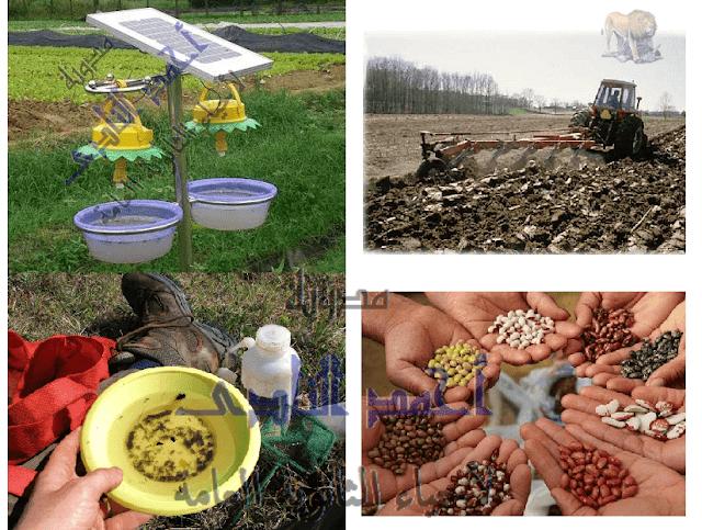 المناعة فى النبات -حماية  النبات من الأعداء -مقاومة الحشرات