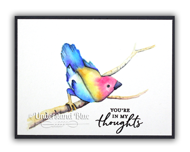 Songbird Watercolor by Understand Blue