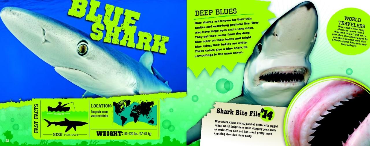Shark bite graphic