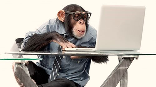 monkey_business.jpg
