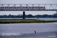 多摩川の鉄橋を渡る電車の写真