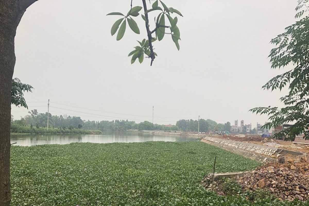 Dự án Việt Yên Lakeside City
