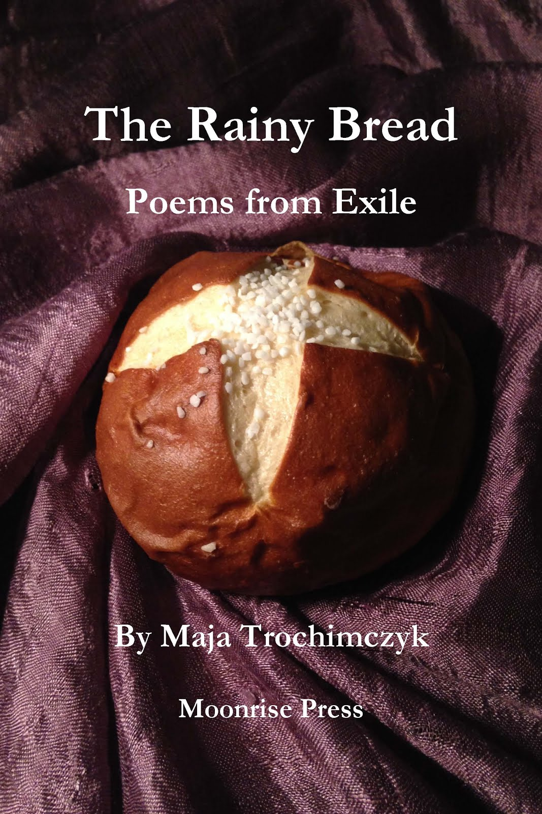 The Rainy Bread: Poems from Exile