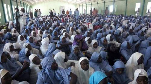 50 abducted Dapchi schoolgirls now in Niger Republic
