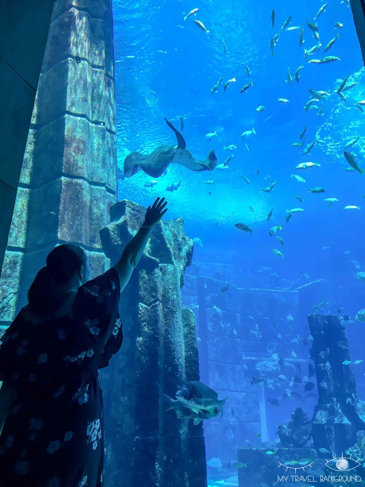 My Travel Background : Escale à Dubaï, que visiter en 3 jours ? - Atlantis The Palm, The Lost Chamber