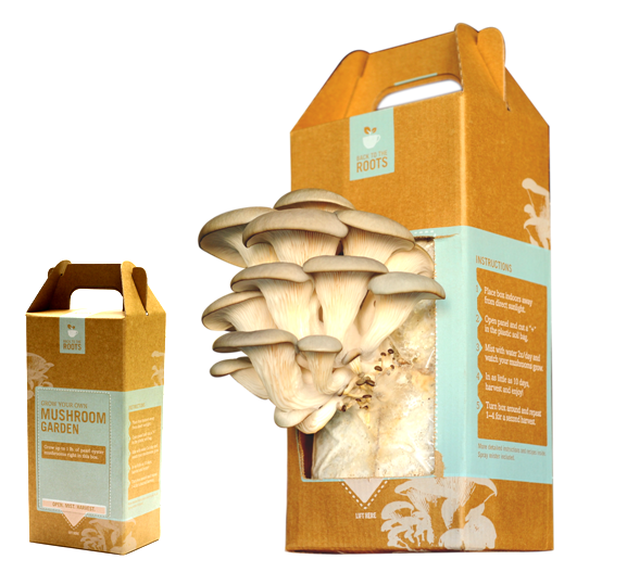 Back to the Roots Grow Your Own Mushroom Kit Giveaway