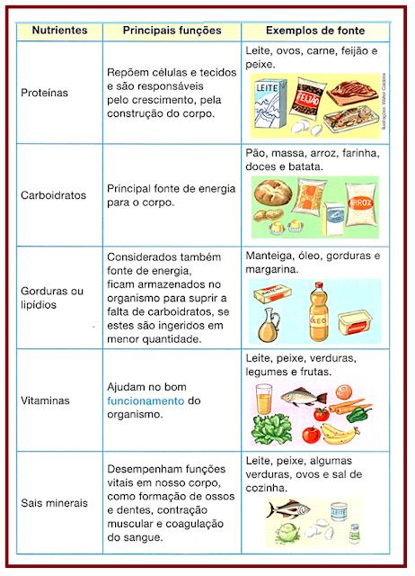 Alimentação Equilibrada Atividades de Ciências