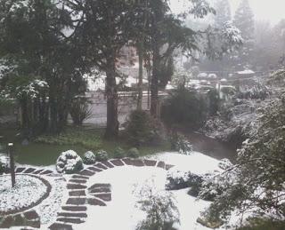 Vista com neve Gramado