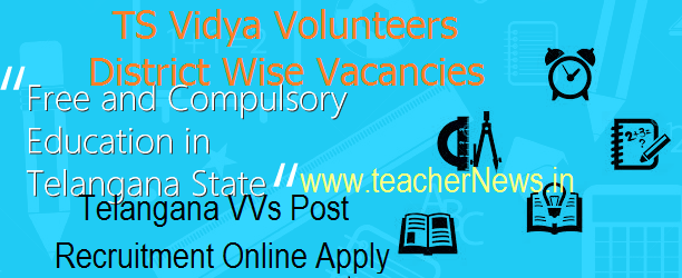 TS Vidya Volunteers District Wise Vacancies 2018- 16781 VVs Post Recruitment Online Apply