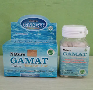 Gamat emas for stroke