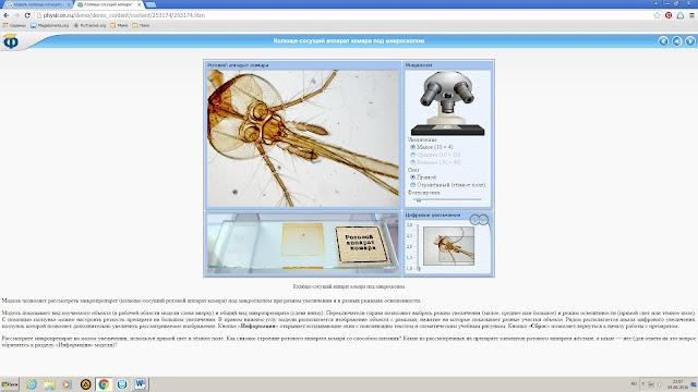 комар под микроскопом_почему кусают насекомые_магия биологии