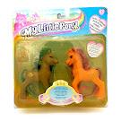 MLP Princess Flora Romantic Couple Ponies G2 Pony