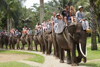 http://www.teluklove.com/2017/02/pesona-keindahan-wisata-bali-elephant.html