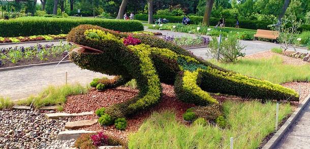 Gaudi's Salamander