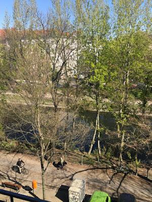 Uferpromenade mit frischem Baumgrün (noch durchsichtig)
