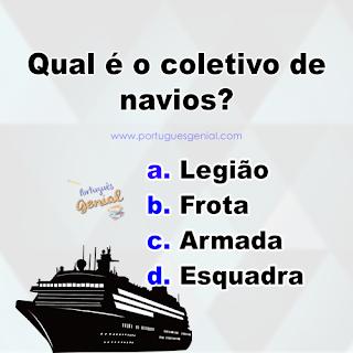 Coletivo de navios - Qual é o coletivo de navios?