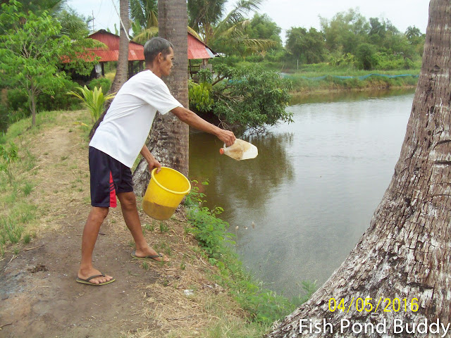 Fish pond buddy fish farm activities for Farm pond maintenance