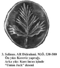 selinus kereviz yaprağı