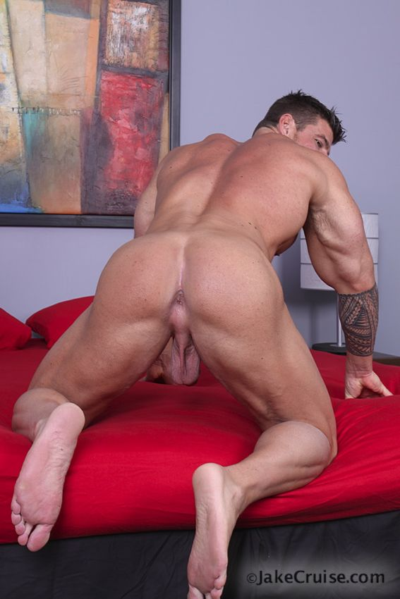Zeb Atlas Ass 119