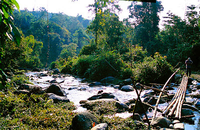 Irrawaddy sources in Kachin State
