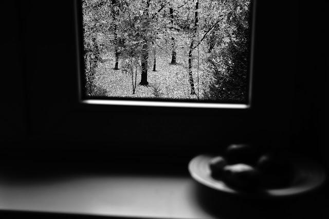 Widok z okna. Fotografia czarno-biała. Abstrakcja. Krajobraz. Fotografia odklejona. fot. Łukasz Cyrus