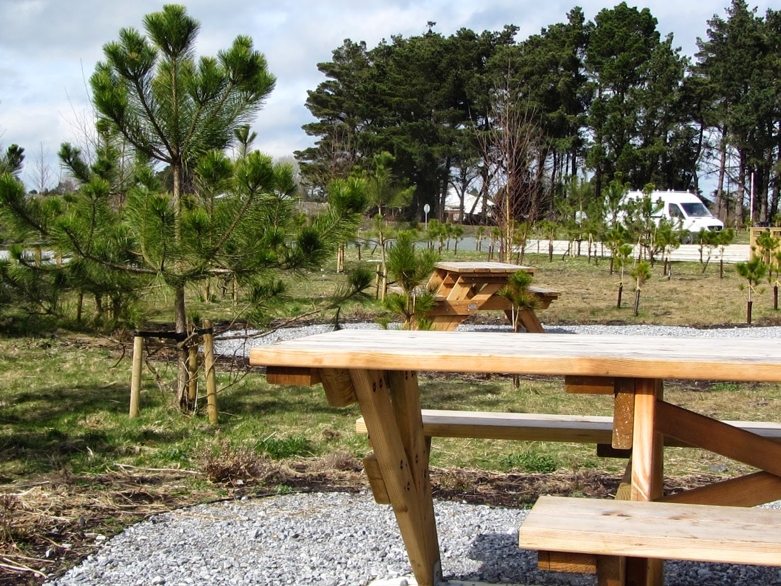 Picnic Table Lough Boora