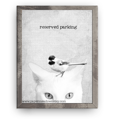 Cat and Bird Mini Poster- Reserved Parking. You can purchase and download our photography creations and instantly print at home from our Paper Meadows Photography Shop on ETSY. To Visit our shop now click here.