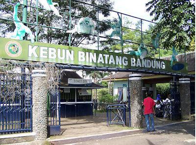Kebun Binatang Terbaik di Indonesia Terkenal yang Harus Dikunjungi