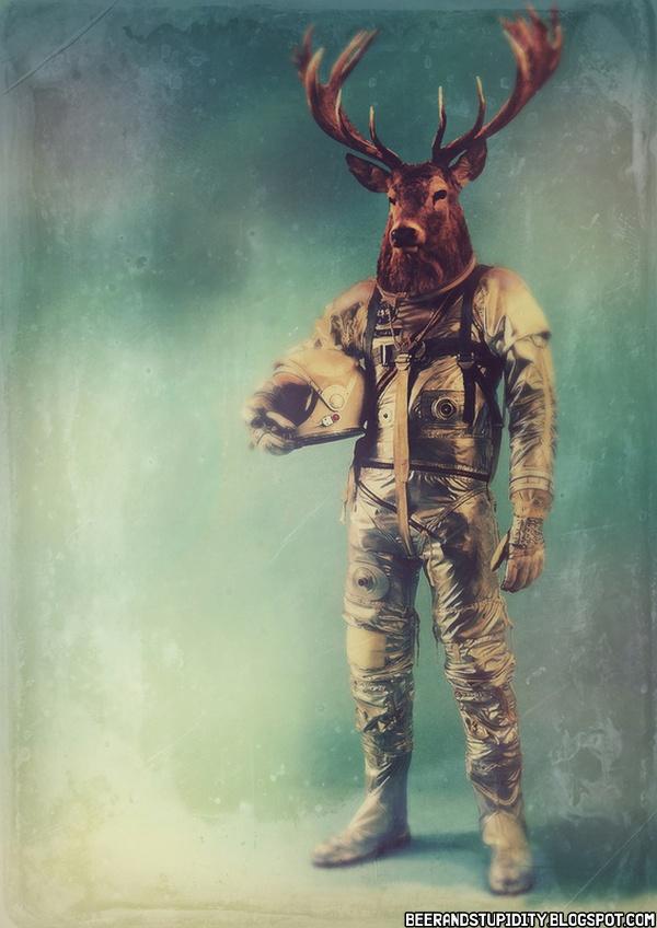Beer And Stupidity: Astronaut Animals... And One Samurai ...