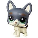 Littlest Pet Shop Series 3 Mini Pack Jack O