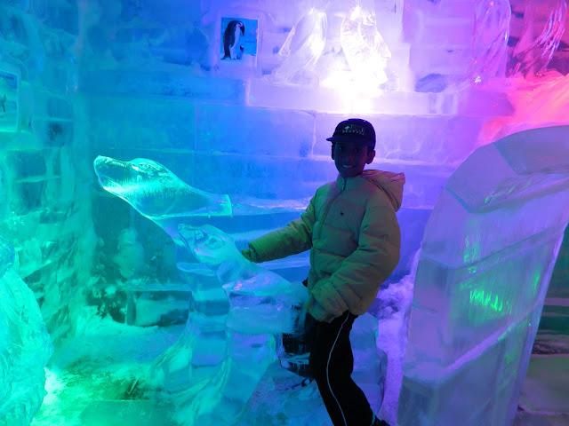 Riding the ice polar bear