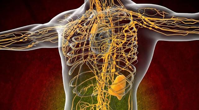curatarea organismului cu medicina naturala