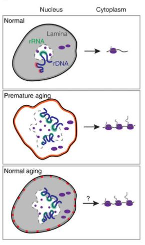 News In Proteomics Research