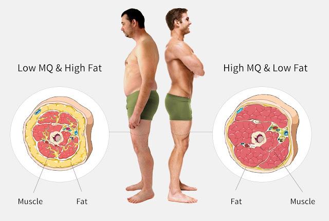這類型人吃得多,對於食物消化吸收能力好