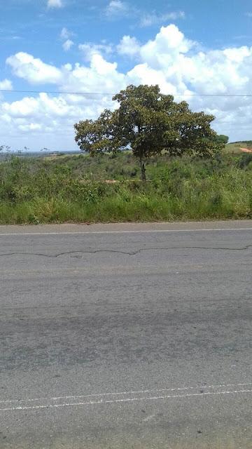 VIXE ! Mais um corpo é localizado em Alagoinhas
