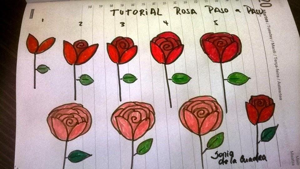 Paso A Paso Dibujar Una Rosa