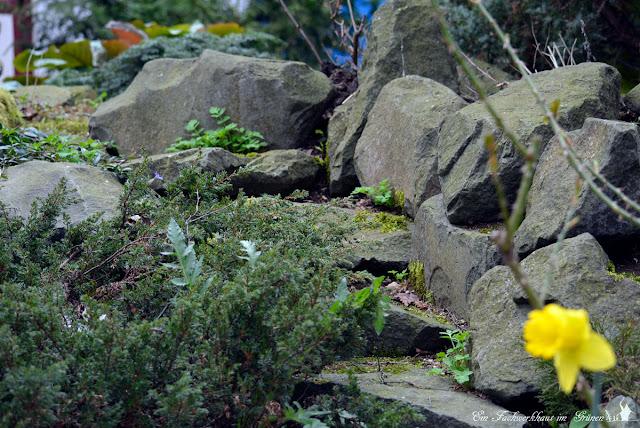 Immergruene Pflanzen, Basalt, Treppe