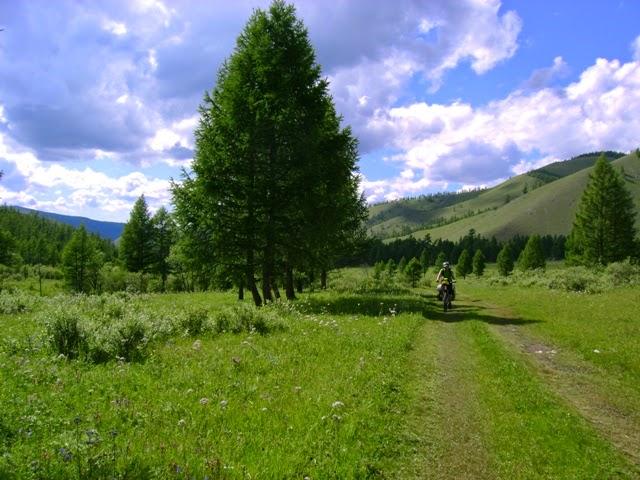 Bosques camino de Chandamani-Öndör