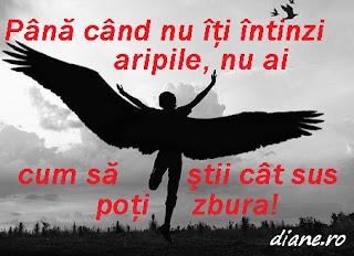 Până când nu îţi întinzi aripile, nu ai cum să ştii cât sus poţi zbura