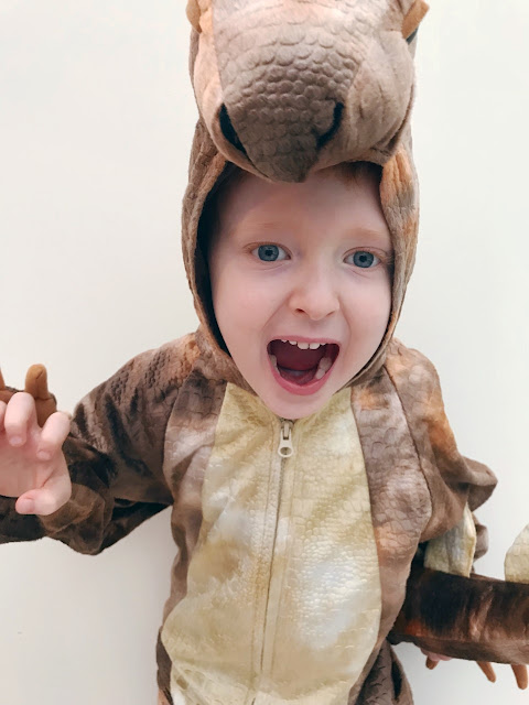 Little boy dressed up as a dinosaur