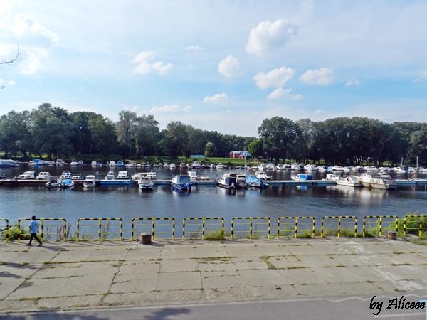 Dunare-port-belgrad