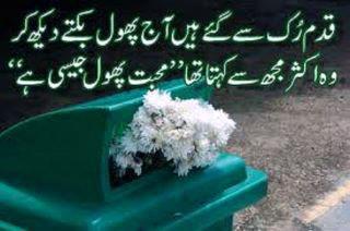 Urdu Shayri Pics