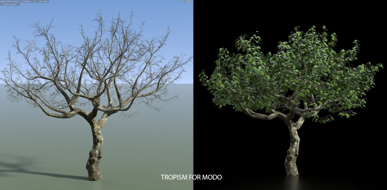 Tropism for Modo | Tool for creating procedural tree, vine and vein